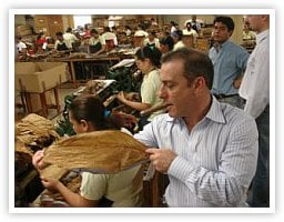 Examining Tobacco in the Factory